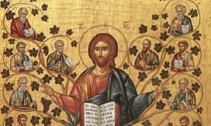 Виноградная лоза молитва