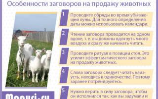 Молитва на продажу скота