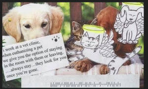 Молитва при смерти домашнего животного
